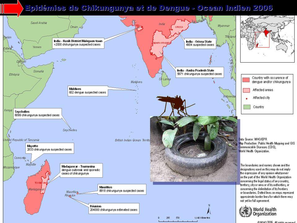 Epidémies de Chikungunya et de Dengue - Ocean Indien 2006