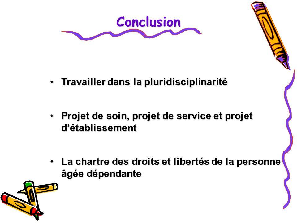 Conclusion Travailler dans la pluridisciplinarité