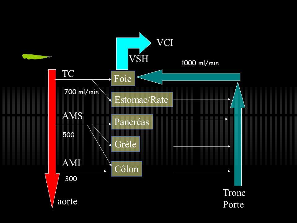 VCI VSH TC Foie Estomac/Rate AMS Pancréas Grèle AMI Côlon Tronc Porte