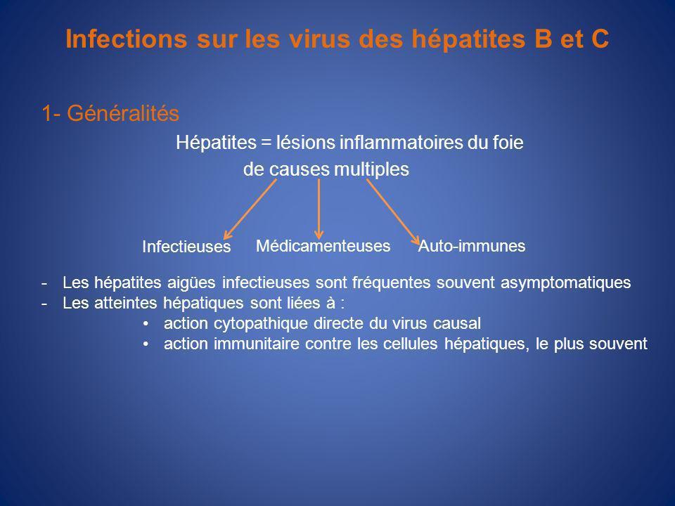 Infections sur les virus des hépatites B et C