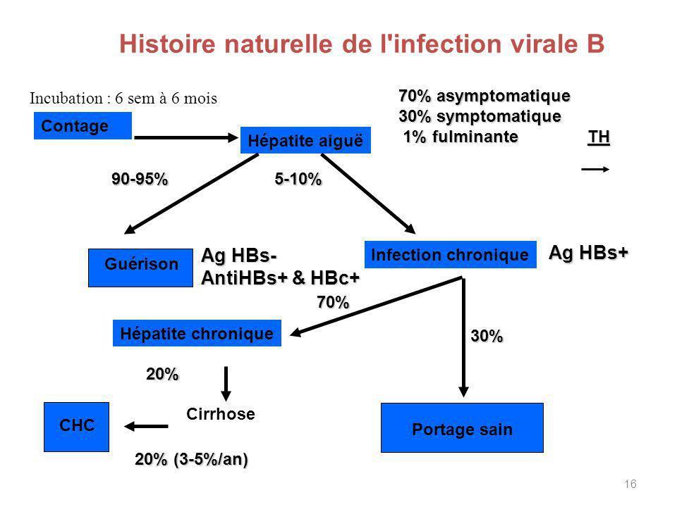 Histoire naturelle de l infection virale B