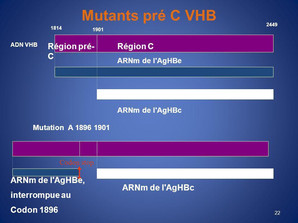 Mutants pré C VHB Région pré-C Région C ARNm de l AgHBe,