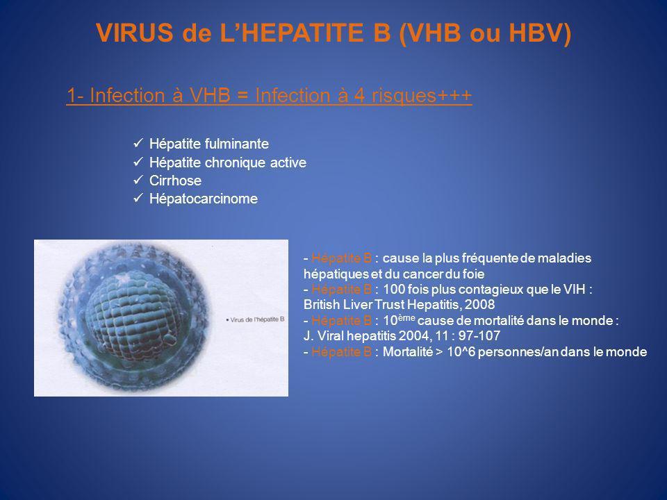 VIRUS de L'HEPATITE B (VHB ou HBV)