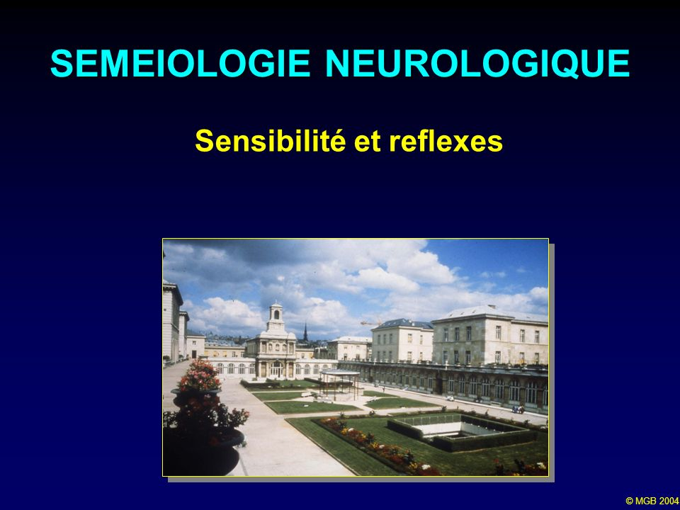 SEMEIOLOGIE NEUROLOGIQUE Sensibilité et reflexes