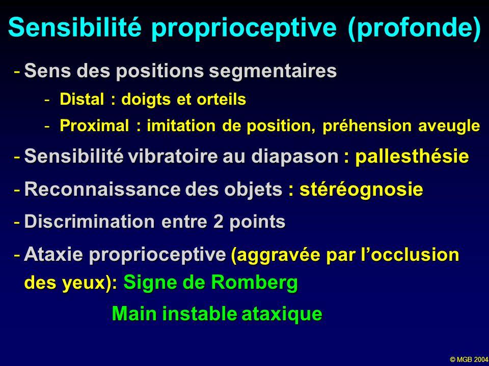 Sensibilité proprioceptive (profonde)