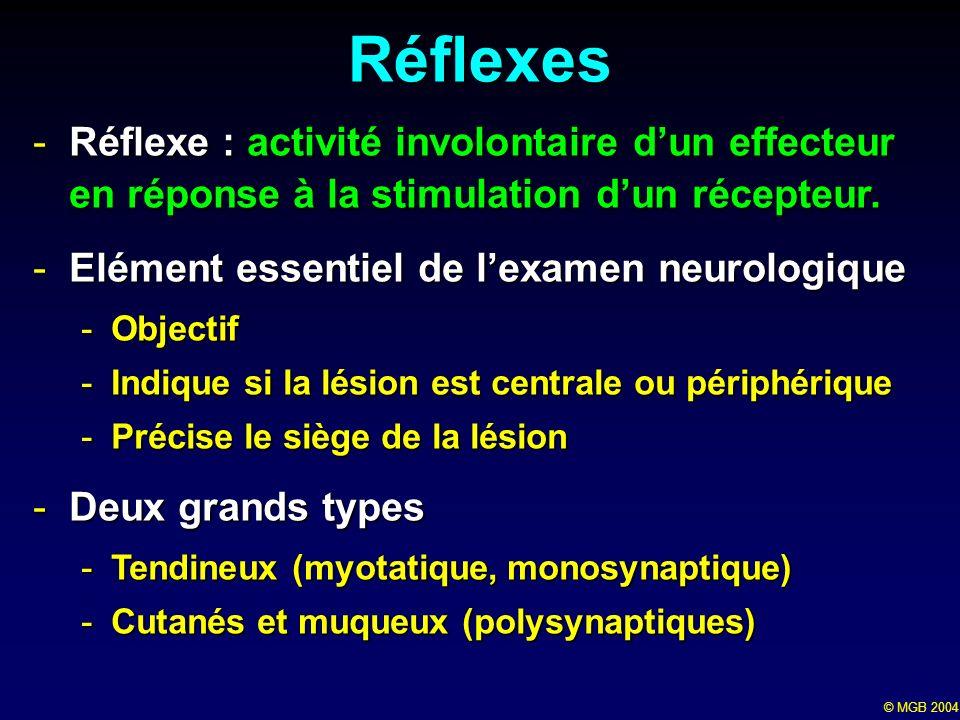 Réflexes Réflexe : activité involontaire d'un effecteur en réponse à la stimulation d'un récepteur.