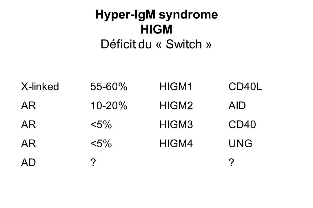 Hyper-IgM syndrome HIGM Déficit du « Switch »