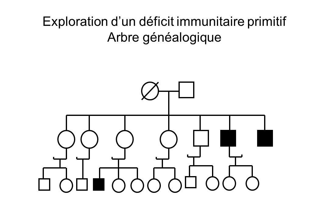Exploration d'un déficit immunitaire primitif
