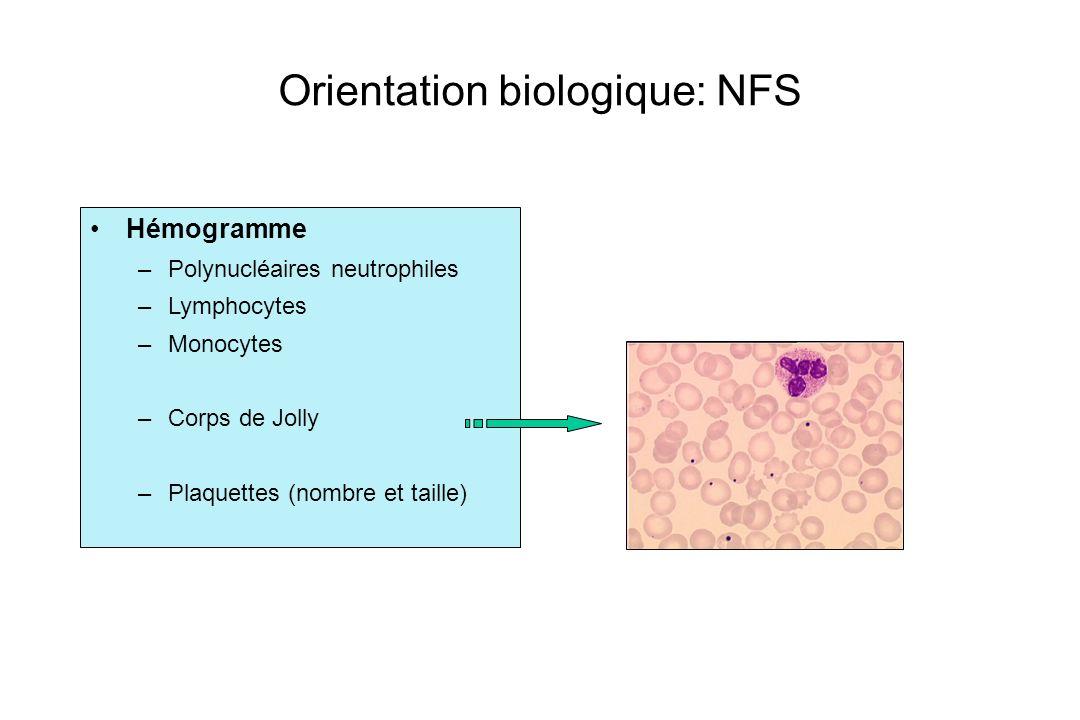 Orientation biologique: NFS