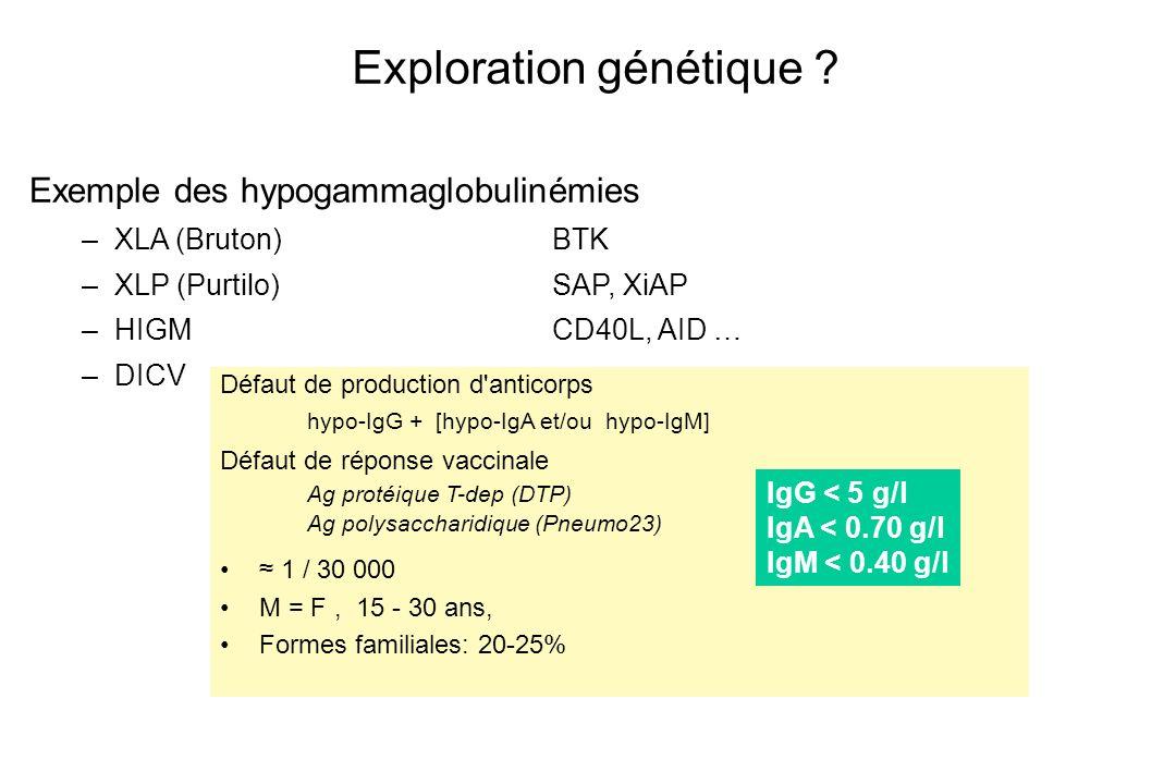 Exploration génétique