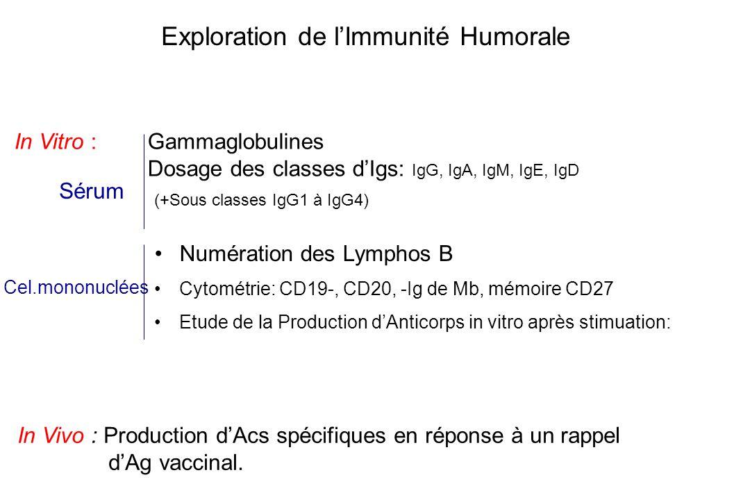 Exploration de l'Immunité Humorale
