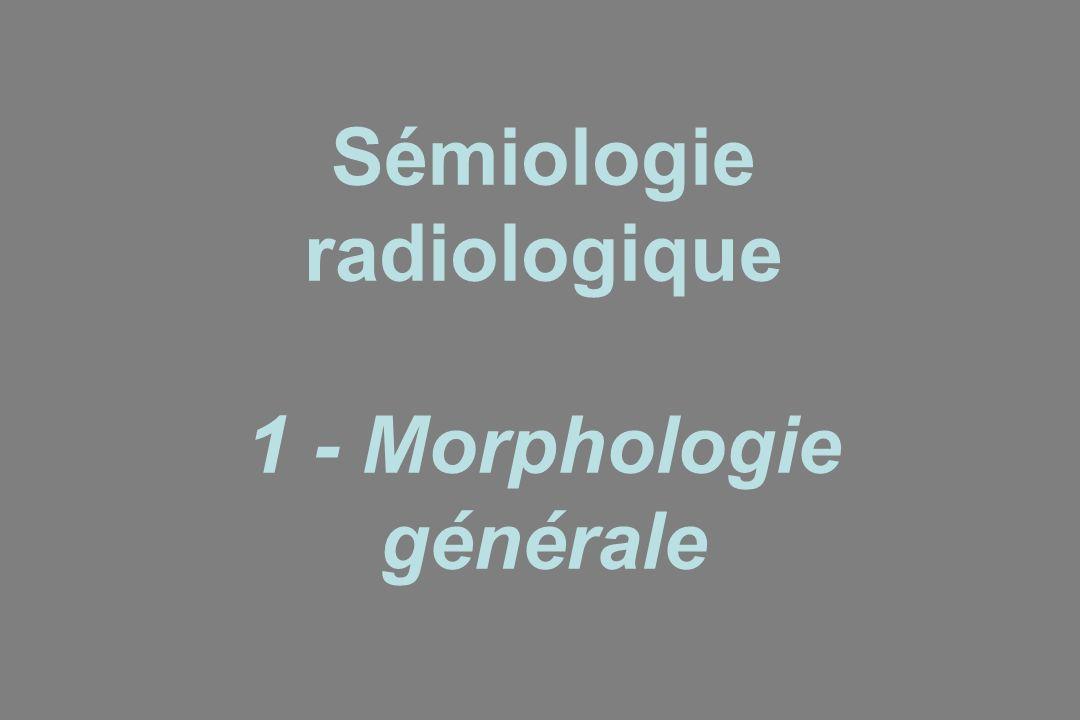 Sémiologie radiologique 1 - Morphologie générale