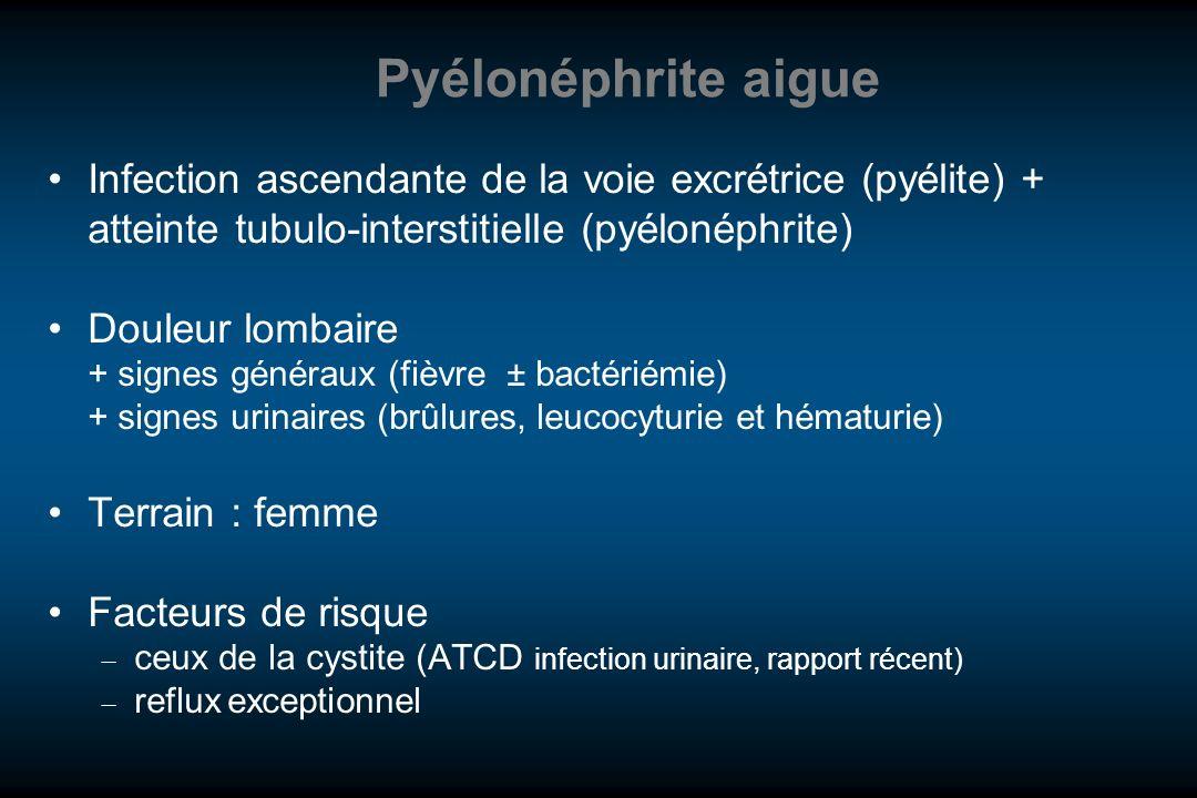 Pyélonéphrite aigue Infection ascendante de la voie excrétrice (pyélite) + atteinte tubulo-interstitielle (pyélonéphrite)