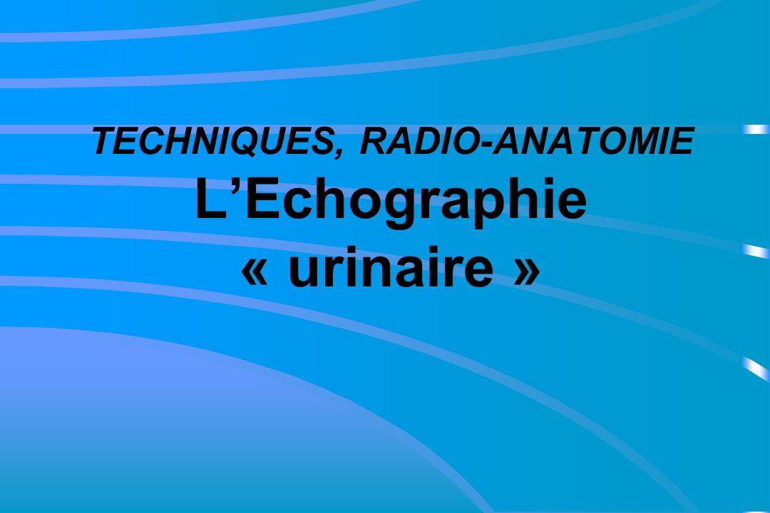 TECHNIQUES, RADIO-ANATOMIE L'Echographie « urinaire »