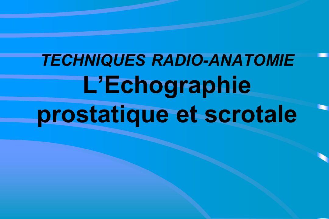 TECHNIQUES RADIO-ANATOMIE L'Echographie prostatique et scrotale