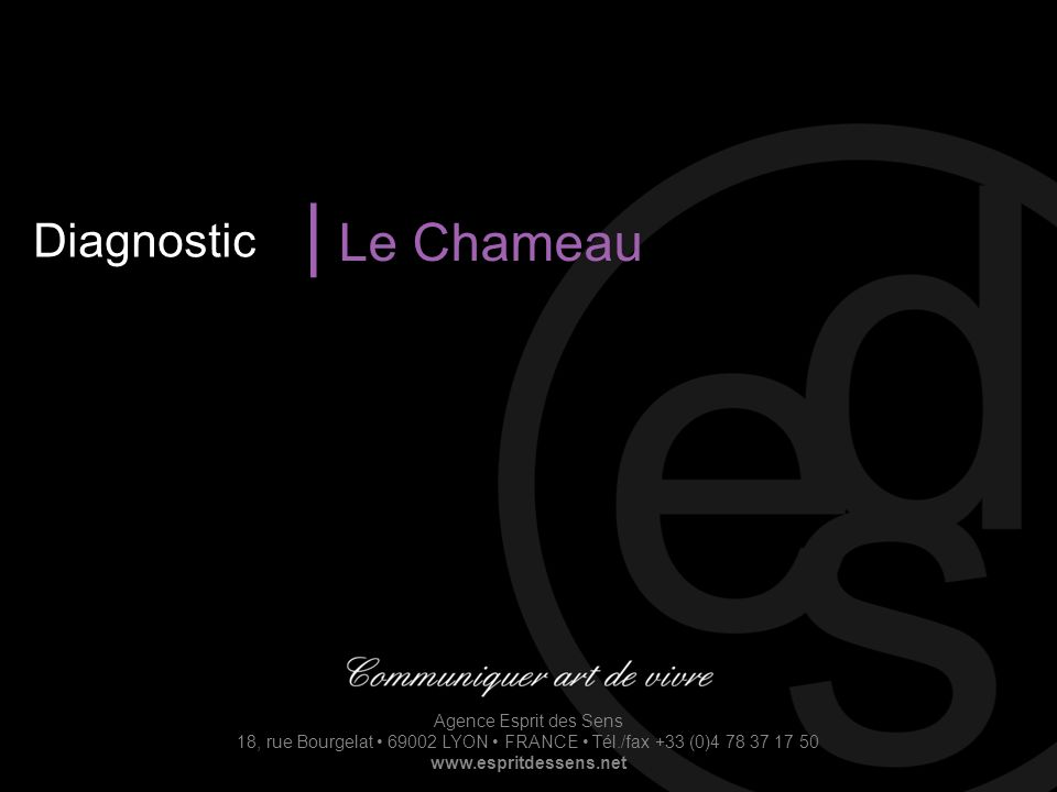 Diagnostic | Le Chameau