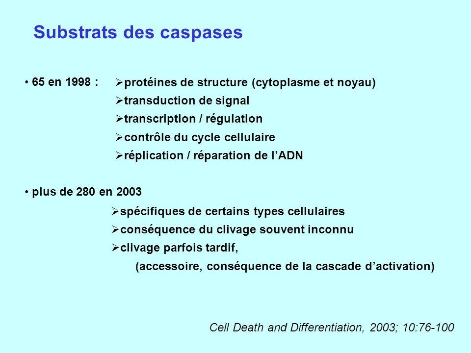 Substrats des caspases