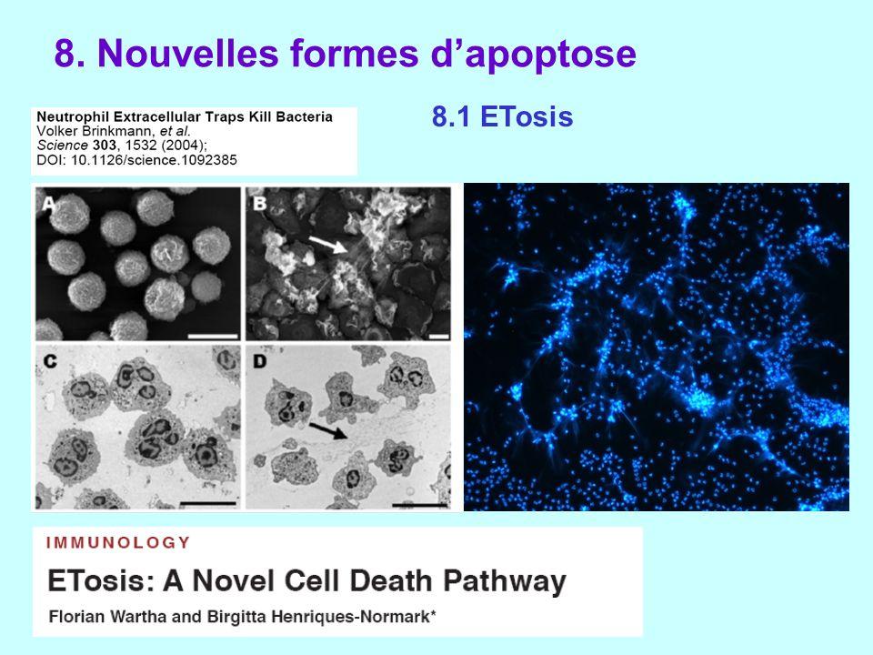 8. Nouvelles formes d'apoptose