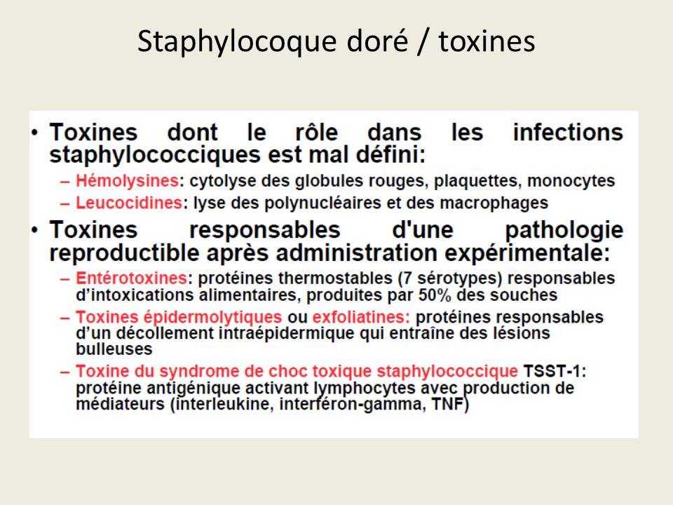 Staphylocoque doré / toxines