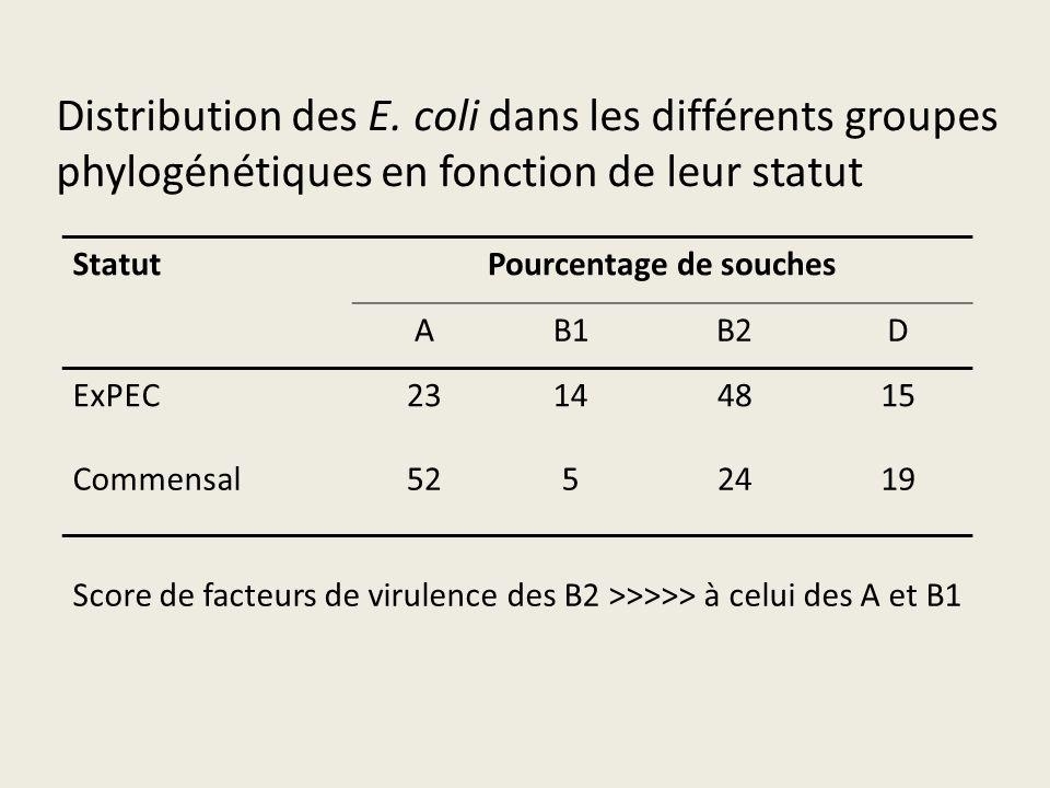 Pourcentage de souches