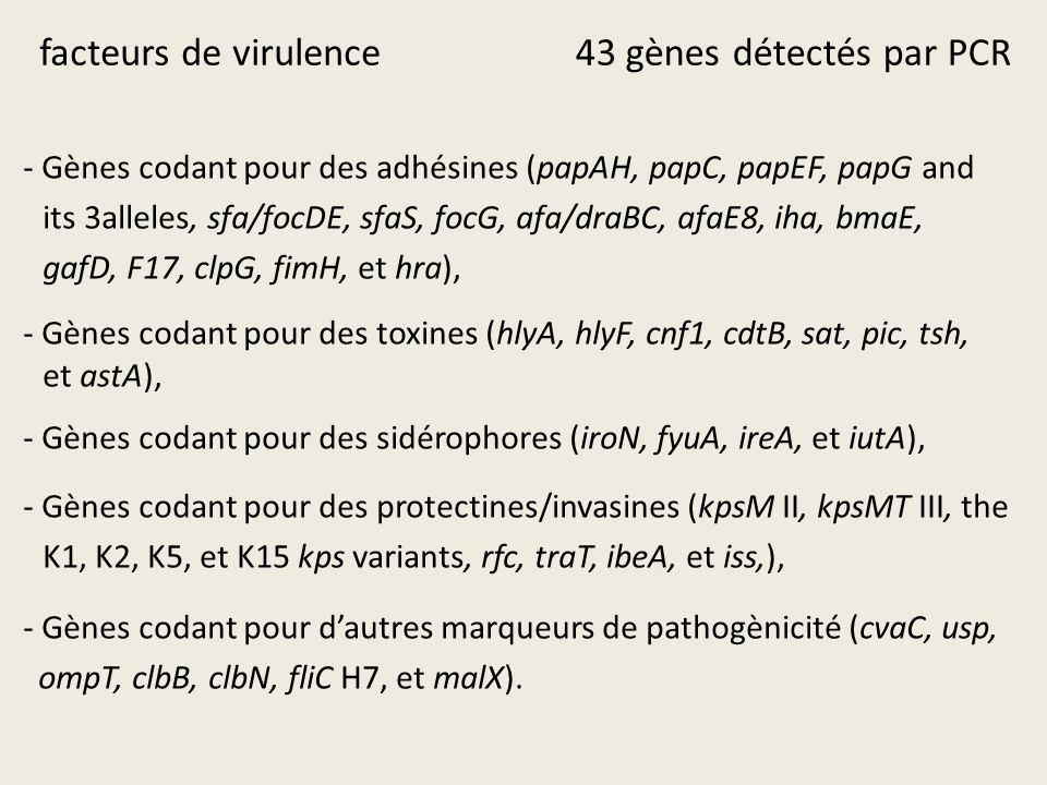 facteurs de virulence 43 gènes détectés par PCR