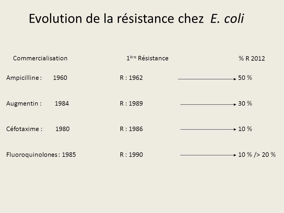 Evolution de la résistance chez E. coli