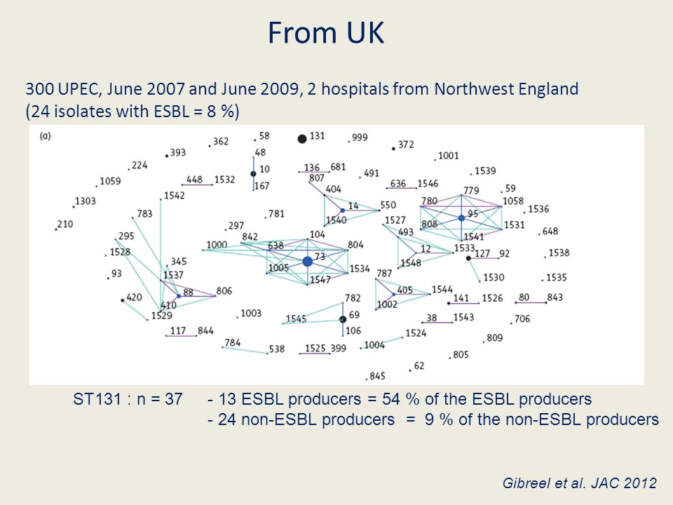 From UK 300 UPEC, June 2007 and June 2009, 2 hospitals from Northwest England. (24 isolates with ESBL = 8 %)