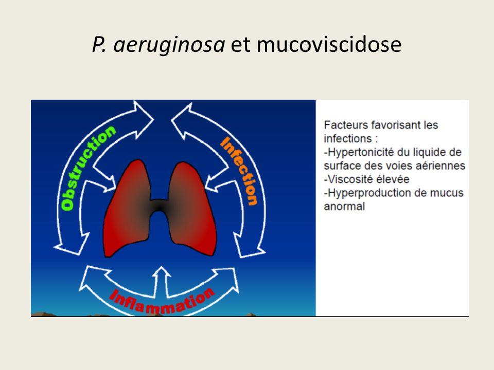 P. aeruginosa et mucoviscidose