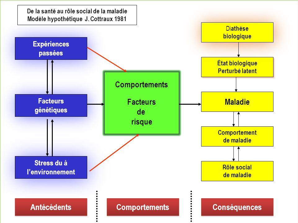 Comportements Facteurs de risque Maladie Antécédents Comportements