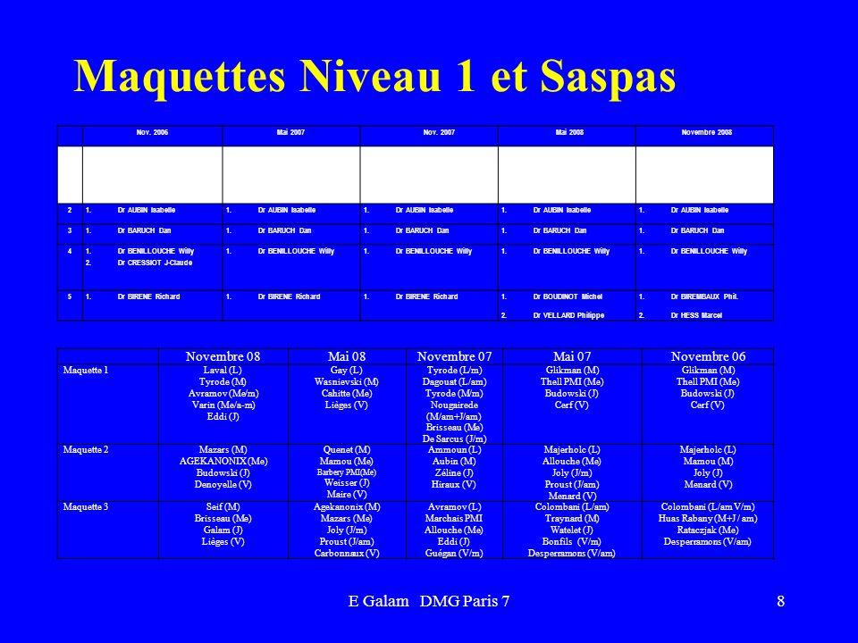 E Galam DMG Paris 7 Maquettes Niveau 1 et Saspas Novembre 08 Mai 08