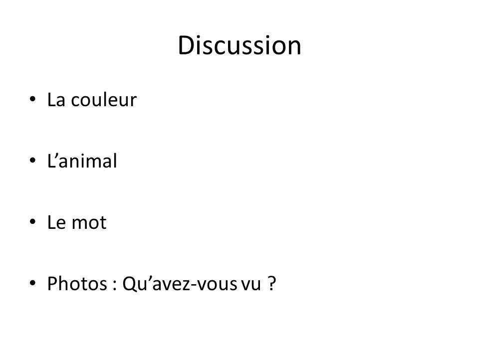 Discussion La couleur L'animal Le mot Photos : Qu'avez-vous vu