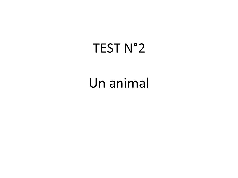 TEST N°2 Un animal