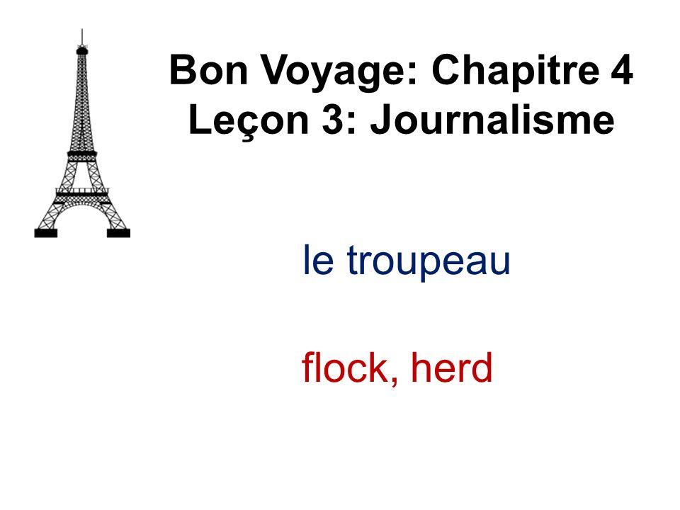 Bon Voyage: Chapitre 4 Leçon 3: Journalisme le troupeau flock, herd