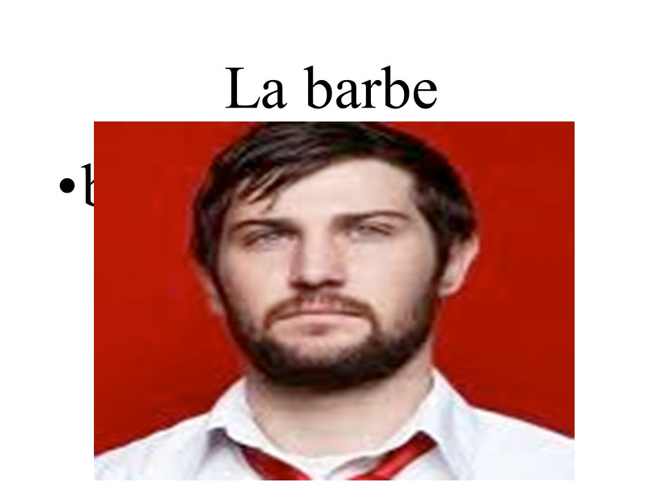La barbe beard