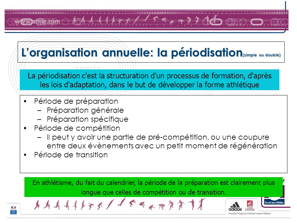 L'organisation annuelle: la périodisation(simple ou double)