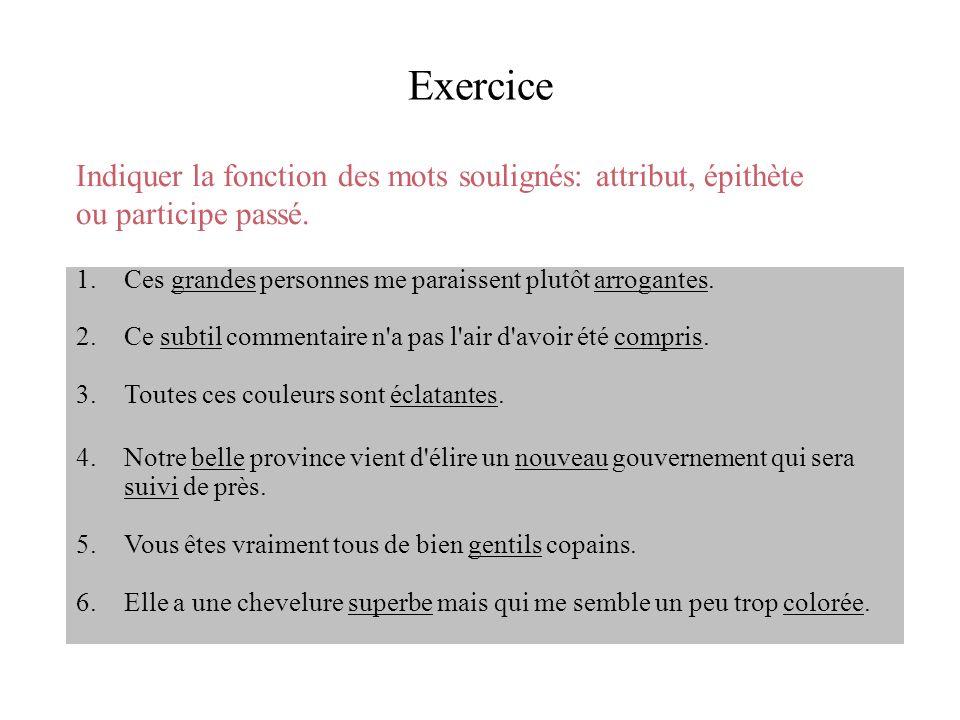 Exercice Indiquer la fonction des mots soulignés: attribut, épithète