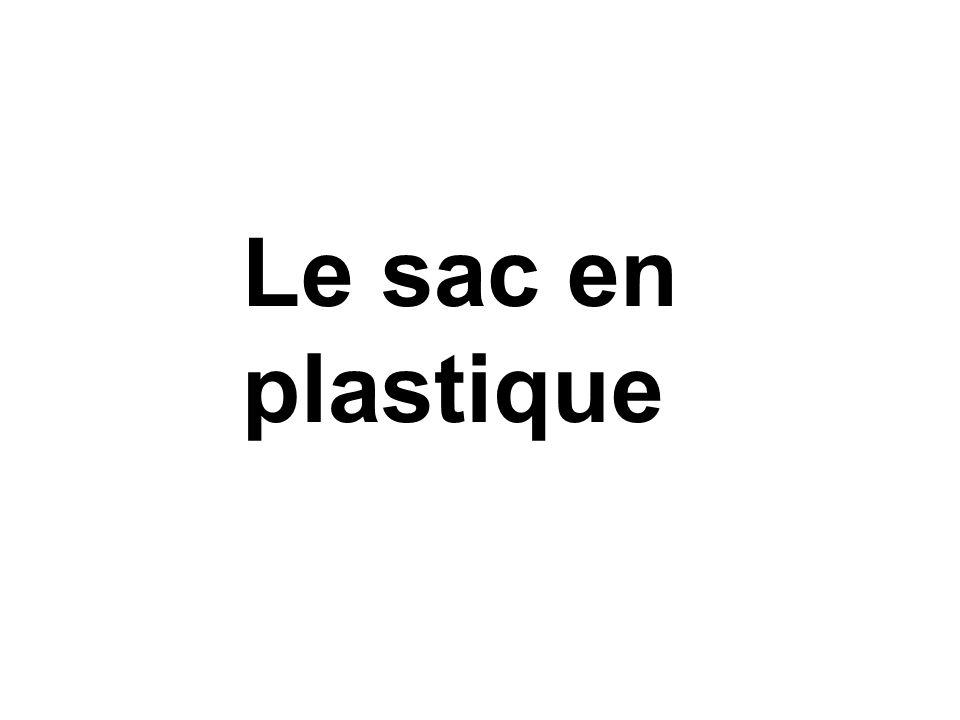 Le sac en plastique