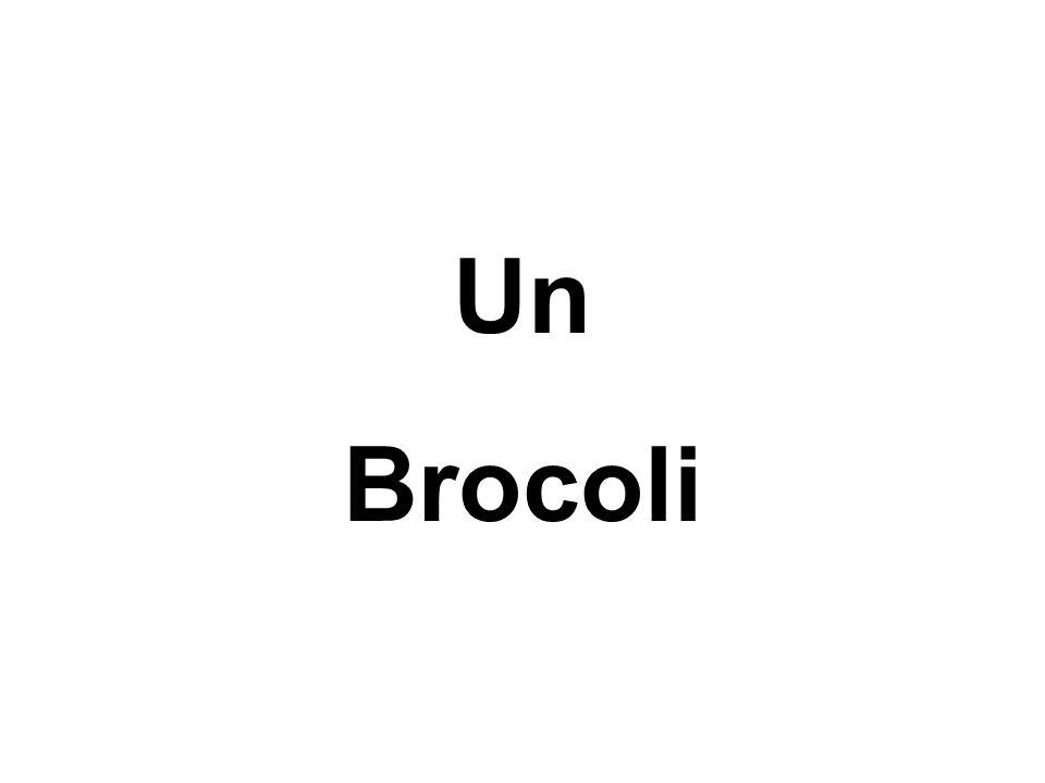 Un Brocoli