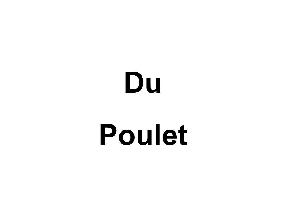 Du Poulet