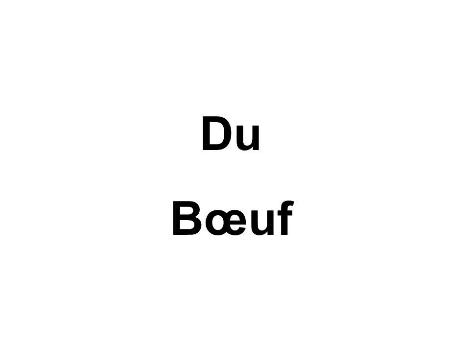 Du Bœuf
