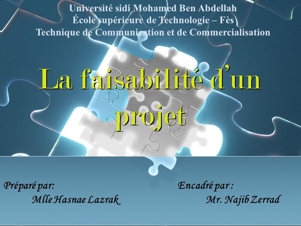 La faisabilité d'un projet