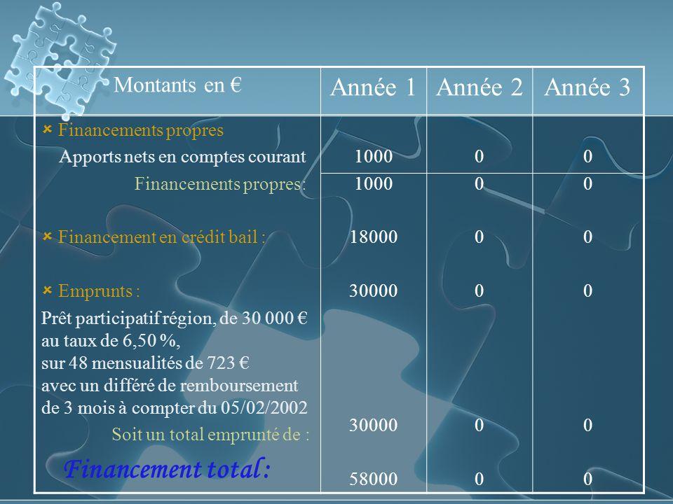Financement total : Année 1 Année 2 Année 3 Montants en €