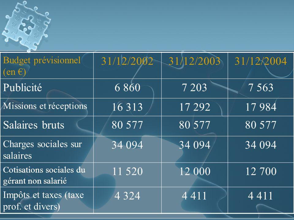 Budget prévisionnel (en €)