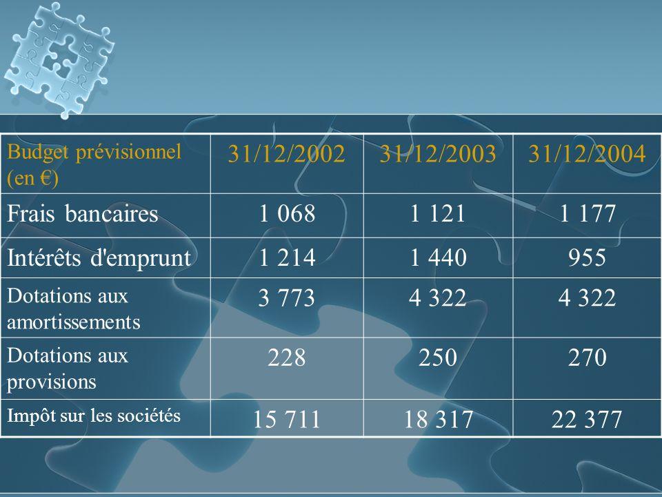 31/12/2002 31/12/2003 31/12/2004 Frais bancaires 1 068 1 121 1 177