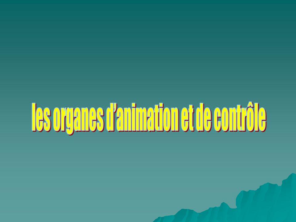 les organes d'animation et de contrôle