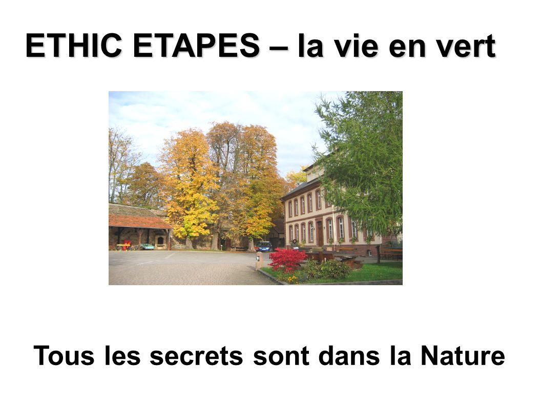 Tous les secrets sont dans la Nature