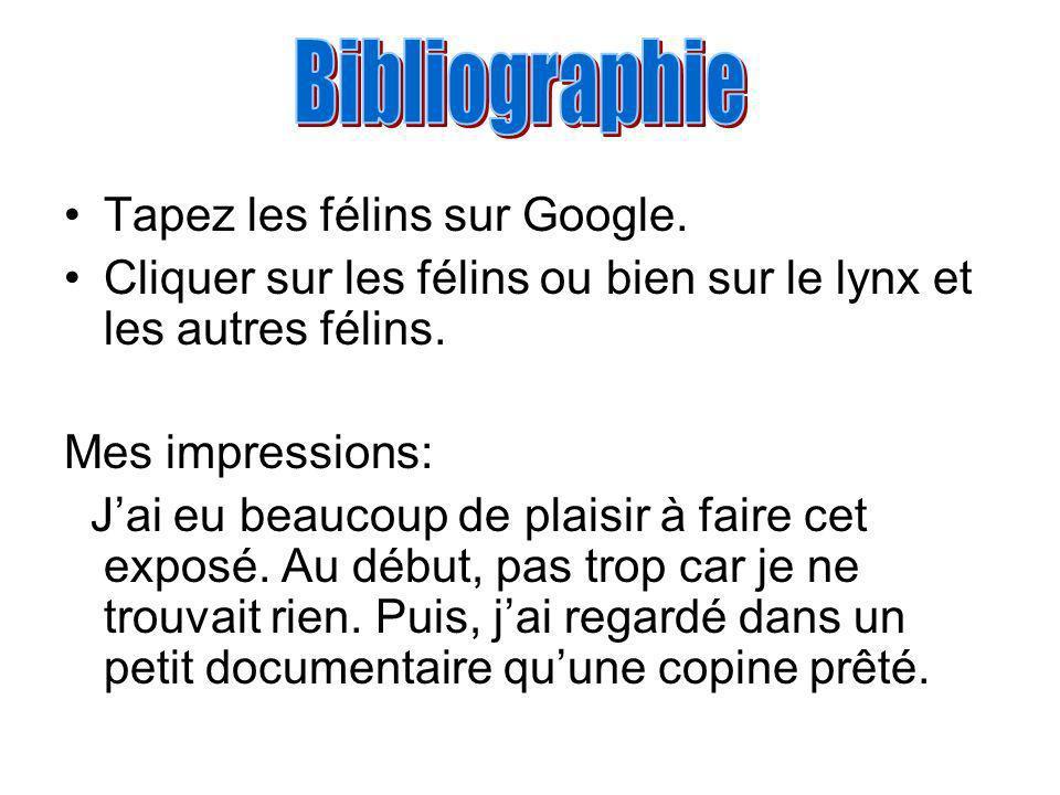 Bibliographie Tapez les félins sur Google.