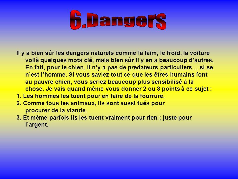 6.Dangers