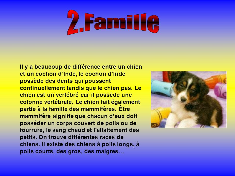 2.Famille