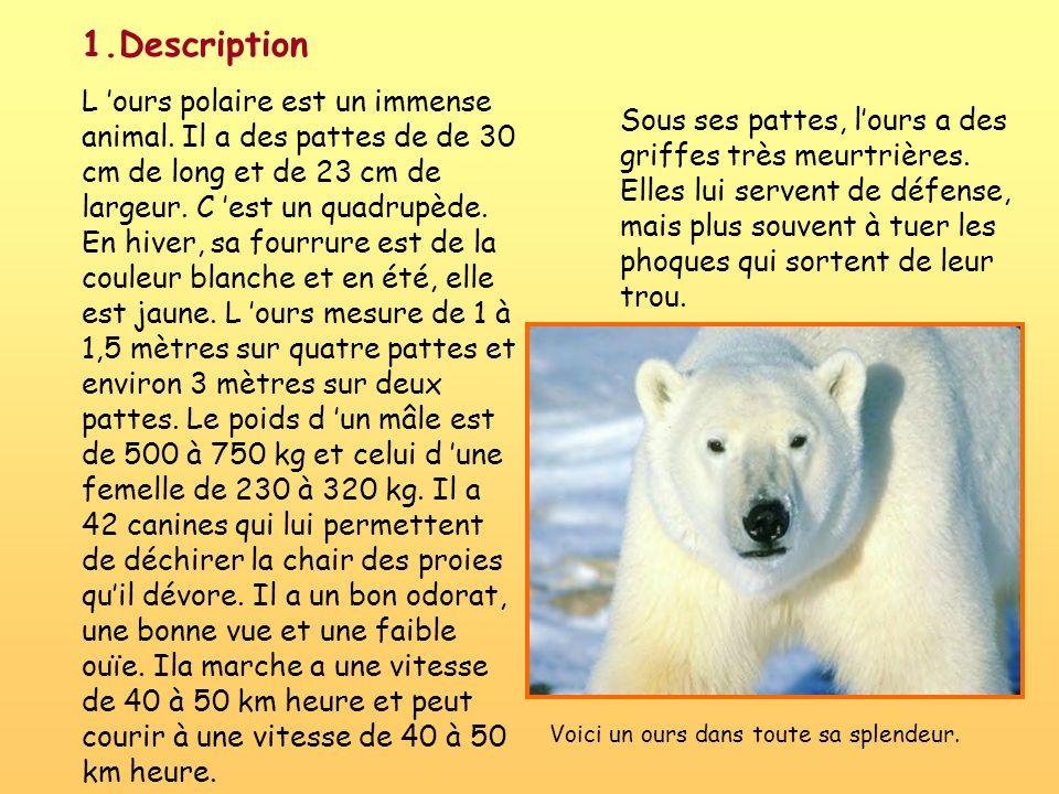 1.Description
